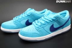 Nike_SB_Dunk_Low_Fury_02