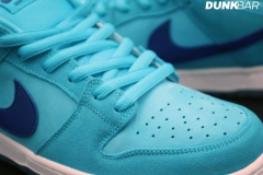 Nike_SB_Dunk_Low_Fury_04