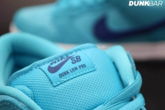 Nike_SB_Dunk_Low_Fury_05