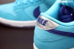 Nike_SB_Dunk_Low_Fury_06